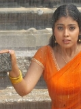 Shriya 240x320_251